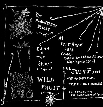 2 Wild Fruit 7 July 2011 flyer
